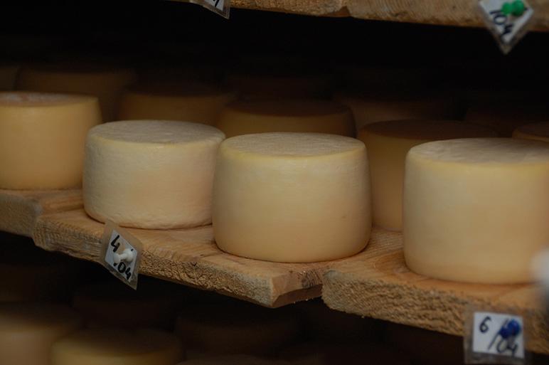 Селисская сыроварня в Закарпатье